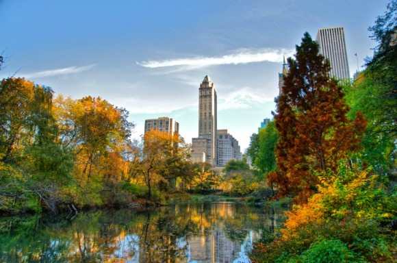 Central Park by Ed Yourdon (Creative Commons)